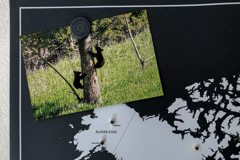 Magnetische Weltkarte