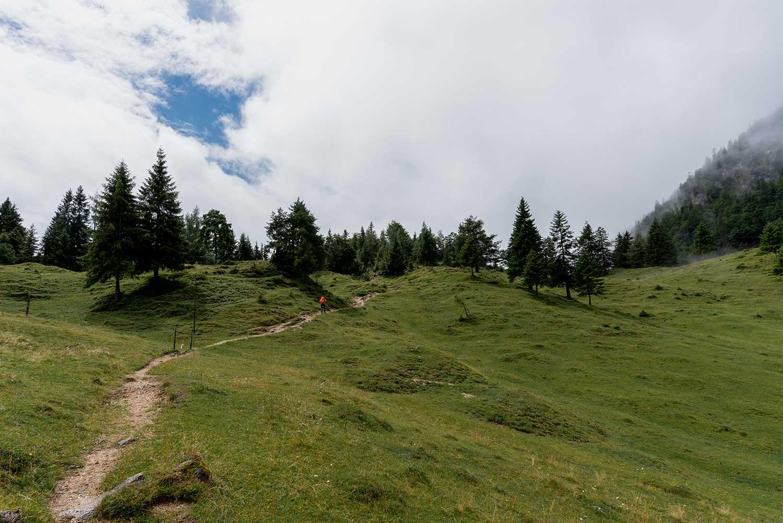 Wanderweg zum Höhlensteinhaus