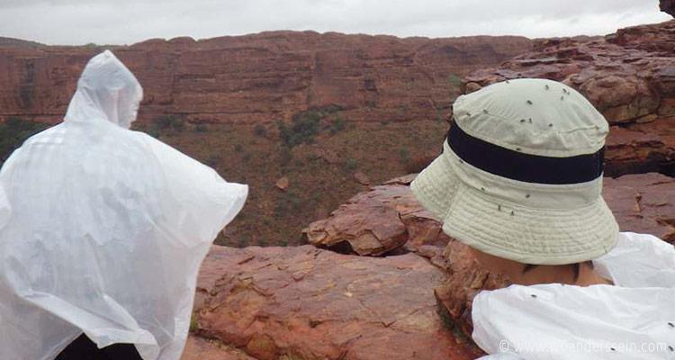 kings-canyon-tour-chi2