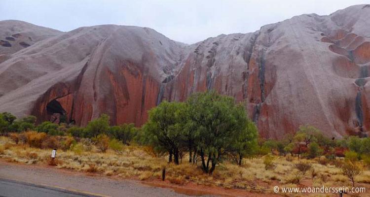uluru-outback-tour11
