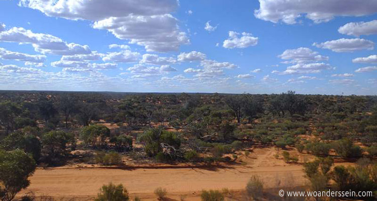 indian-pacific-perth-adelaide-landschaft13