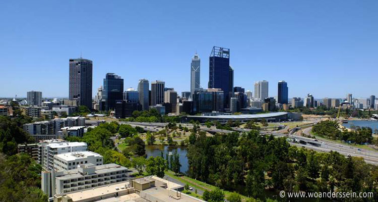perth-kings-park-ausblick-skyline