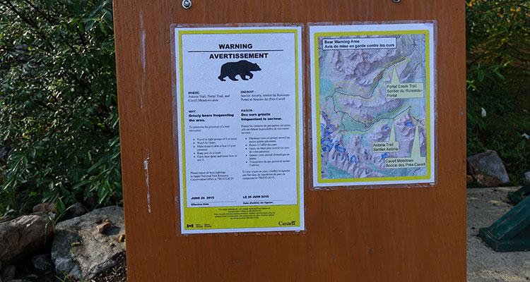 Unterwegs im Jasper Nationalpark