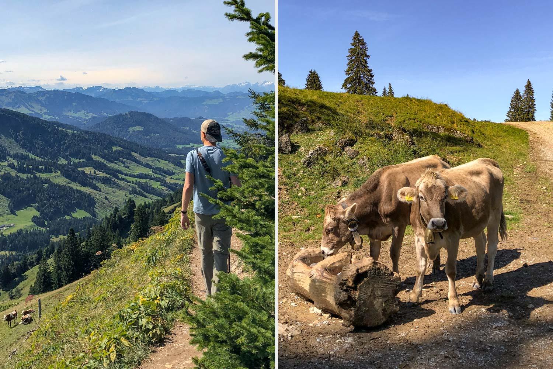 Wandern = Entspannung