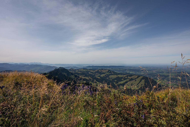 Blick vom Hochgrat bis zum Bodensee