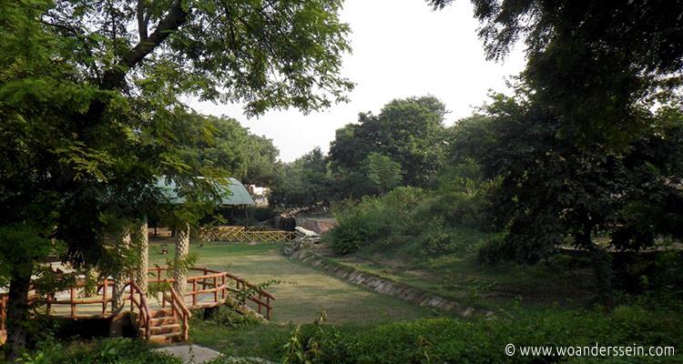 agra-nature-walk2