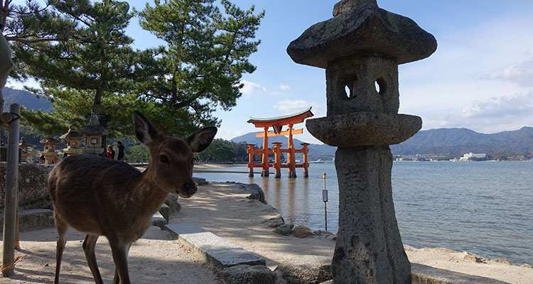 Miyajima in Japan