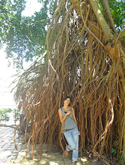 kuala-lumpur-petronas-twin-tower-park2-chi