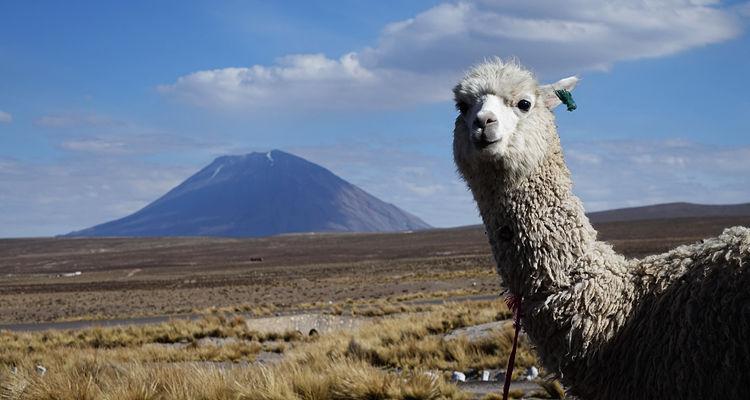 Puno in Peru