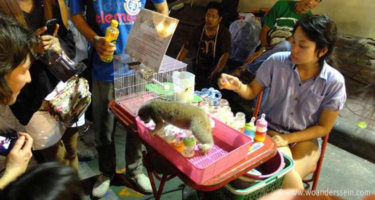 bangkok-festival-in-phra-nakhon4