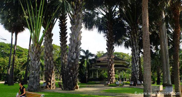 bangkok-lumphini-park-chi