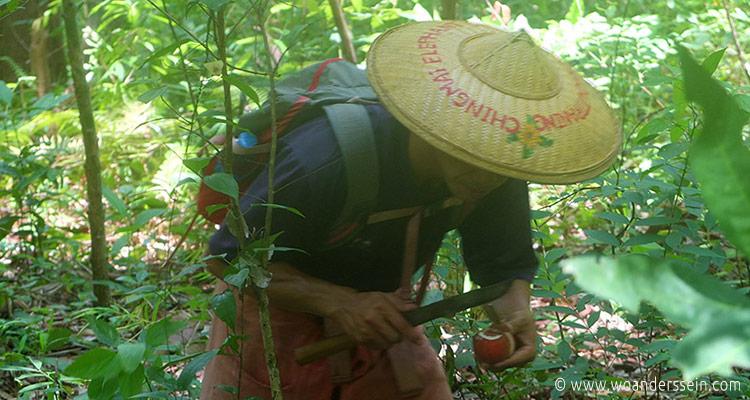 chiang-mai-simon-frucht