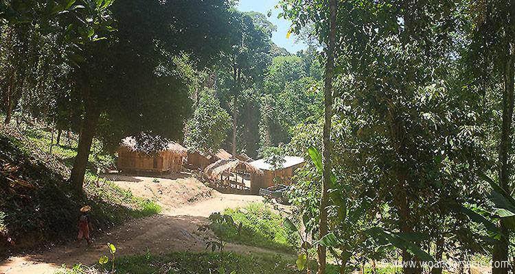 chiang-mai-trekking12