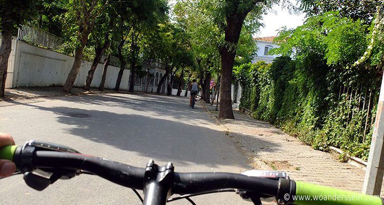 istanbul-princess-islands-fahrrad1