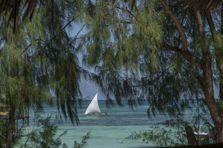 Traumstrand Sansibar