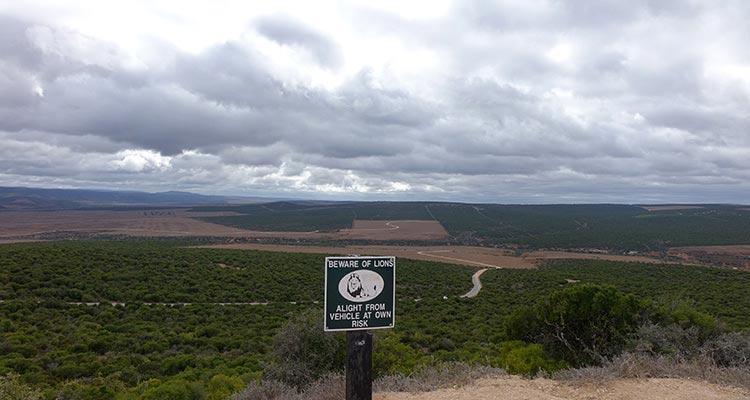 アドエレファント国立公園
